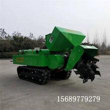 圣泰牌小型微耕机生产厂家田园管理机规格自动化图片