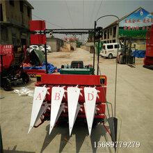 臨河區小型青貯收割機多功能收割機雙割臺割曬機拖拉機式割曬機廠家直銷升級產品圖片