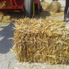 麦秸秆打捆机