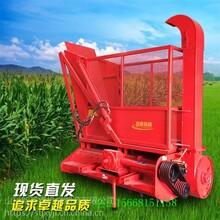 玉米秸稈柔絲機玉米秸稈壓塊燃料圖片