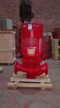 上海江洋泵业XBD3.6/30-100GX2恒压多级泵管道离心泵铸铁多级泵XBD3.8/25-100GX2