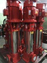 上海江洋泵业XBD14.0/15-80GX10多级泵多级离心泵恒压多级泵XBD13.8/18-80GX10