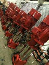 厂家巡检柜消火栓稳压泵50LG18-20x4消防多级泵扬程图片