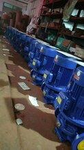 供应酒楼管道泵/热水循环离心泵/江洋生产管道多级泵专业