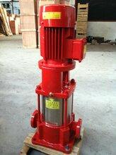 立式多级水泵40GDL6-12X7多级管道泵/机组给水多级泵图片