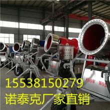 人工造雪机厂家一站式采购小型造雪机价格好效率高图片