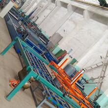 供应山东聚合物匀质保温板机械生产线图片