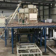 供应山东FS免拆外墙保温板机械生产线图片