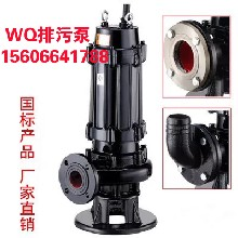 上海登泉QW无堵塞排污泵65WQ20-10-1.5KW污水泵工程配套可配自耦装置图片