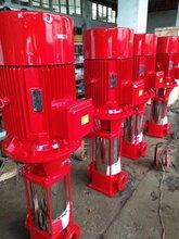 上海专业设计GDL立式冲压多级泵登泉耐腐蚀离心多级泵50GDL12-15×3图片