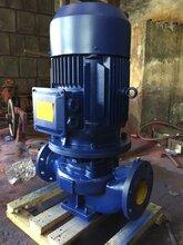 上海ISG立式管道離心泵4KW熱水管道泵ISG50-160A可定制防爆管道泵圖片