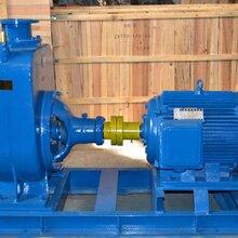 山东泰安ZX卧式自吸离心泵40ZX-10-40清水自吸泵4KW无堵塞自吸泵图片