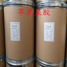 苹果果胶生产厂家苹果果胶厂家价格图片