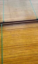 深圳鹽田沙頭角腳手架出租,梧桐鍍鋅腳手架售賣,田心模板售賣圖片