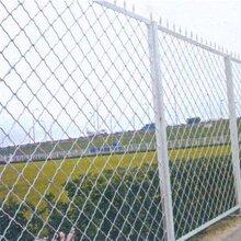 东驰直供护栏美格网桥梁护栏美格网工厂隔离护栏网图片