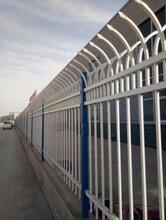 广东厂家直销厂房锌钢护栏优质实惠学校园林小区铁围栏围墙锌钢护栏定制图片