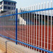 中山翠享新區開發項目部圍欄組裝式鋅鋼圍欄-1.8米藍白色外墻防護柵欄圖片