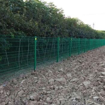 护栏网,双边丝护栏,绿化围栏,农场围栏