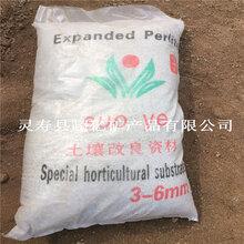 膨胀珍珠岩园艺珍珠岩大颗粒多肉土基质栽培基质松土透气图片