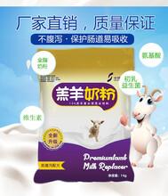中博特羔羊奶粉2斤包郵圖片