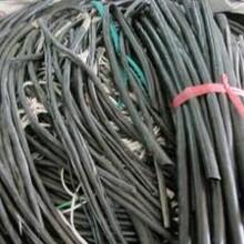 浦东回收电线电缆,长期专业回收废旧电线电缆图片