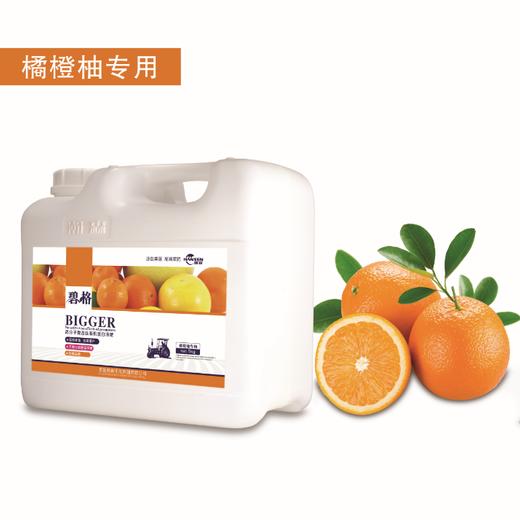 碧格柑柚橙专用