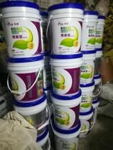 膨果复合微生物菌剂膨果桶肥图片