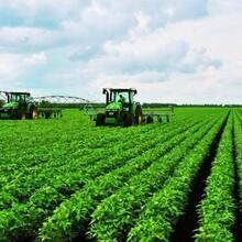 大豆增产套餐大豆专用套餐价格图片