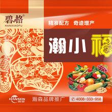 小麦高产套餐小麦抗病增产套餐图片