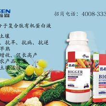 作物营养液叶面肥补充营养增产提质图片