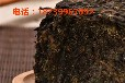 杜仲金雄花茶树苗郑州批发零售价格恒瑞源杜仲文化开发有限公司
