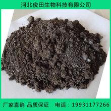 海南羊粪有机肥批发厂家海南纯发酵羊粪多少钱一吨图片