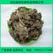 種大棗用什么肥料好新疆和田哪里有批發純干雞糞的廠家