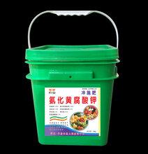 氨化黄腐酸钾桶肥厂家