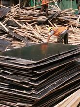 北京市大興區建筑木方回收批發租賃銷售圖片