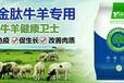牛怎么喂上膘快長得快牛催肥劑哪個好用