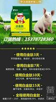 如何養豬長得快,豬催肥增重,營養飼料添加劑,降低呼吸道抵抗力圖片