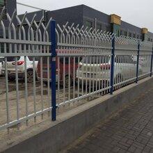铸铁护栏铁艺围栏铁艺围墙锌钢护栏哪家好