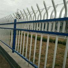 草坪栅栏_围栏_栏杆锌钢草坪护栏_生产厂家