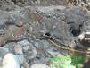 張掖市挖隧道石頭孤石劈裂機技術參數