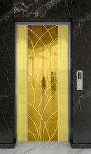 广东电梯厅轿门改包图片