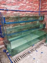 深圳海鲜鱼池价格-罗湖区哪里定做酒店鱼池-罗湖定做渔村海鲜池图片