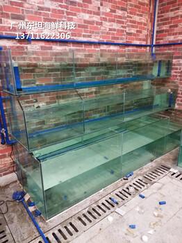 深圳海鲜鱼池价格-罗湖区哪里定做酒店鱼池-罗湖定做渔村海鲜池