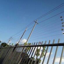 电子围栏报警系统电子围栏报价电子围栏维修