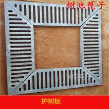 供澜钧球墨铸铁树池篦子1000×1000×500型护树板质量保障
