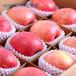 聚乙烯發泡泡沫網套機可用于水果蔬菜蛋類各種網套包裝