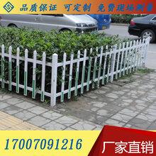 江西户外围墙塑钢护栏庭院花坛围栏栅栏塑钢草坪护栏包送立柱