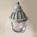 FAD-G-L100xZ防水防塵防腐燈不銹鋼燈三防金鹵燈三防吸頂燈