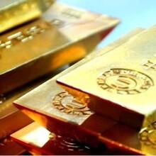 珠宝黄金检测现场鉴定检测出结果图片