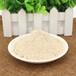 駱駝奶粉駝奶粉粉劑固體飲料專業oem貼牌代加工